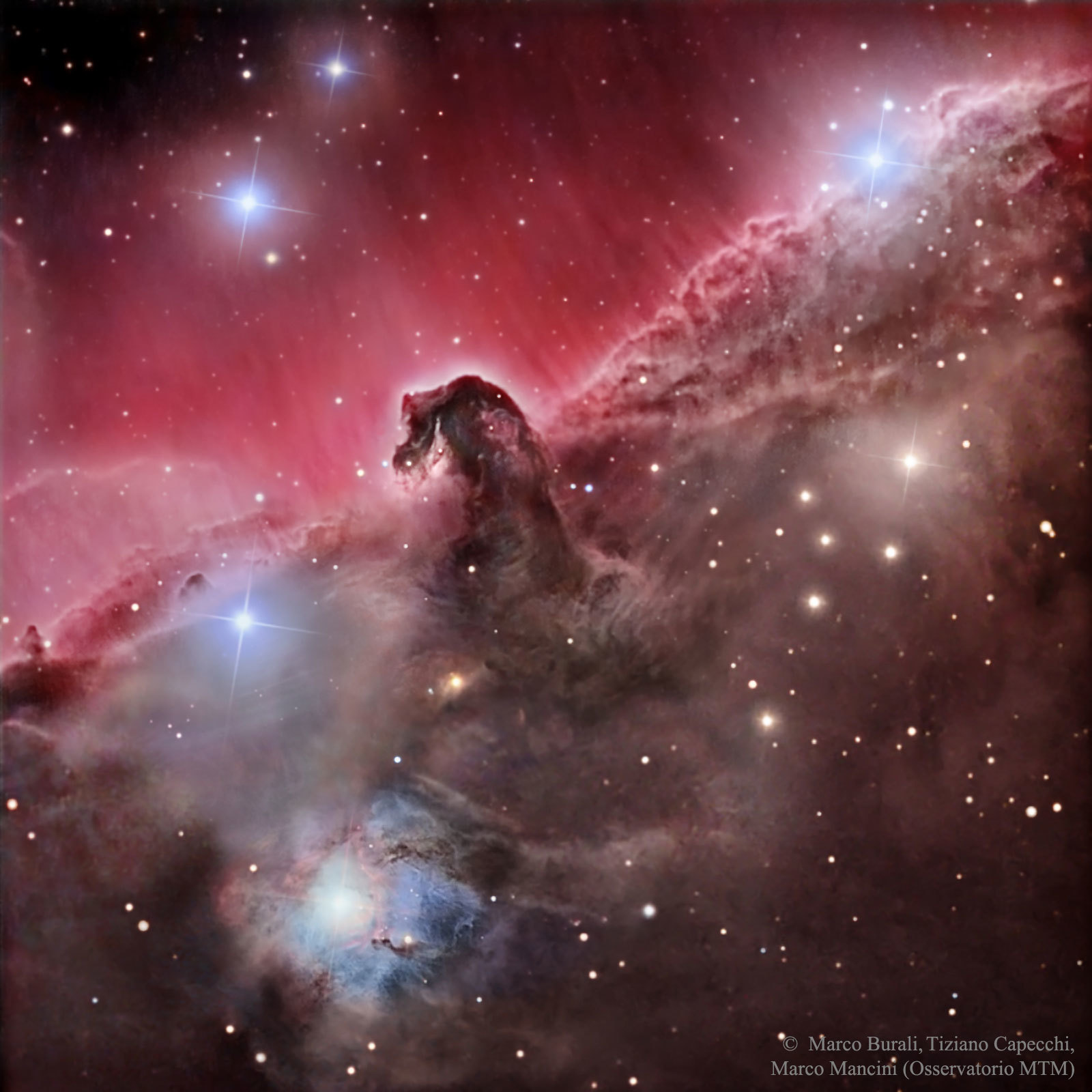 horsehead nebula pictures - HD1200×1200