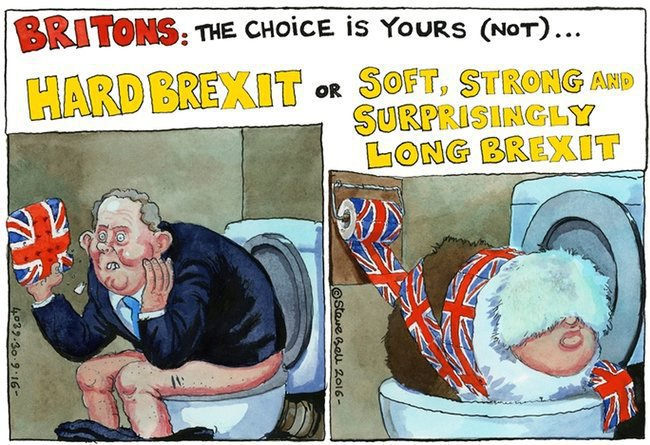 Image result for The Full Brexit cartoon